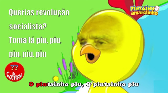 Cavaco Piu piu